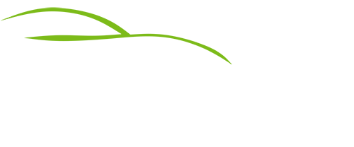 DailyCar